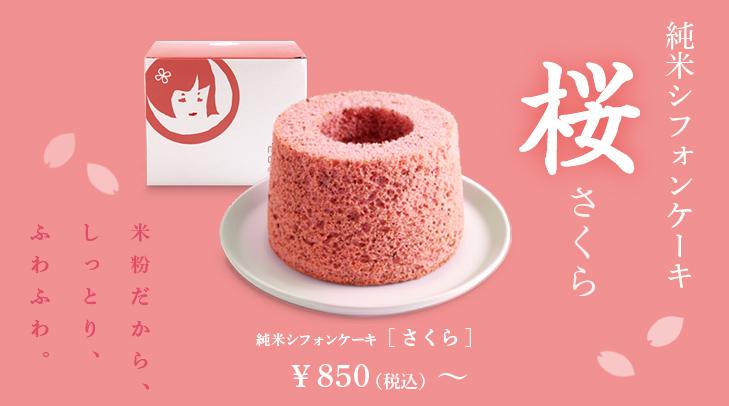 130301_sifon_sakura_restrt2.jpg