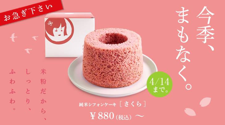 140409_sifon_sakura_fin.jpg