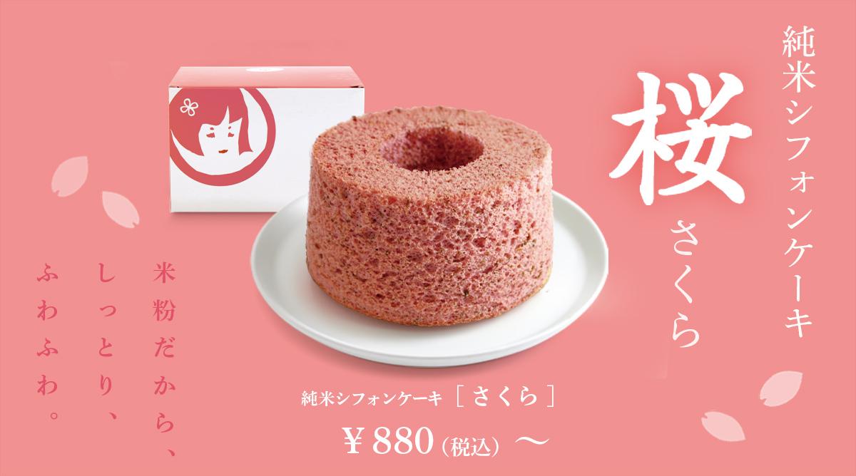 150301_sifon_sakura_restrt.jpg